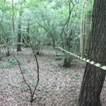 New NFAS Field Archery Club in Salcey Forest