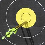 Winter Field Archery League